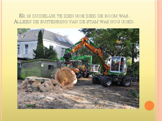 Jaaroverzicht 2012 locatie Hillegom - 2070422-51.jpg