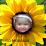 Asha S's profile photo