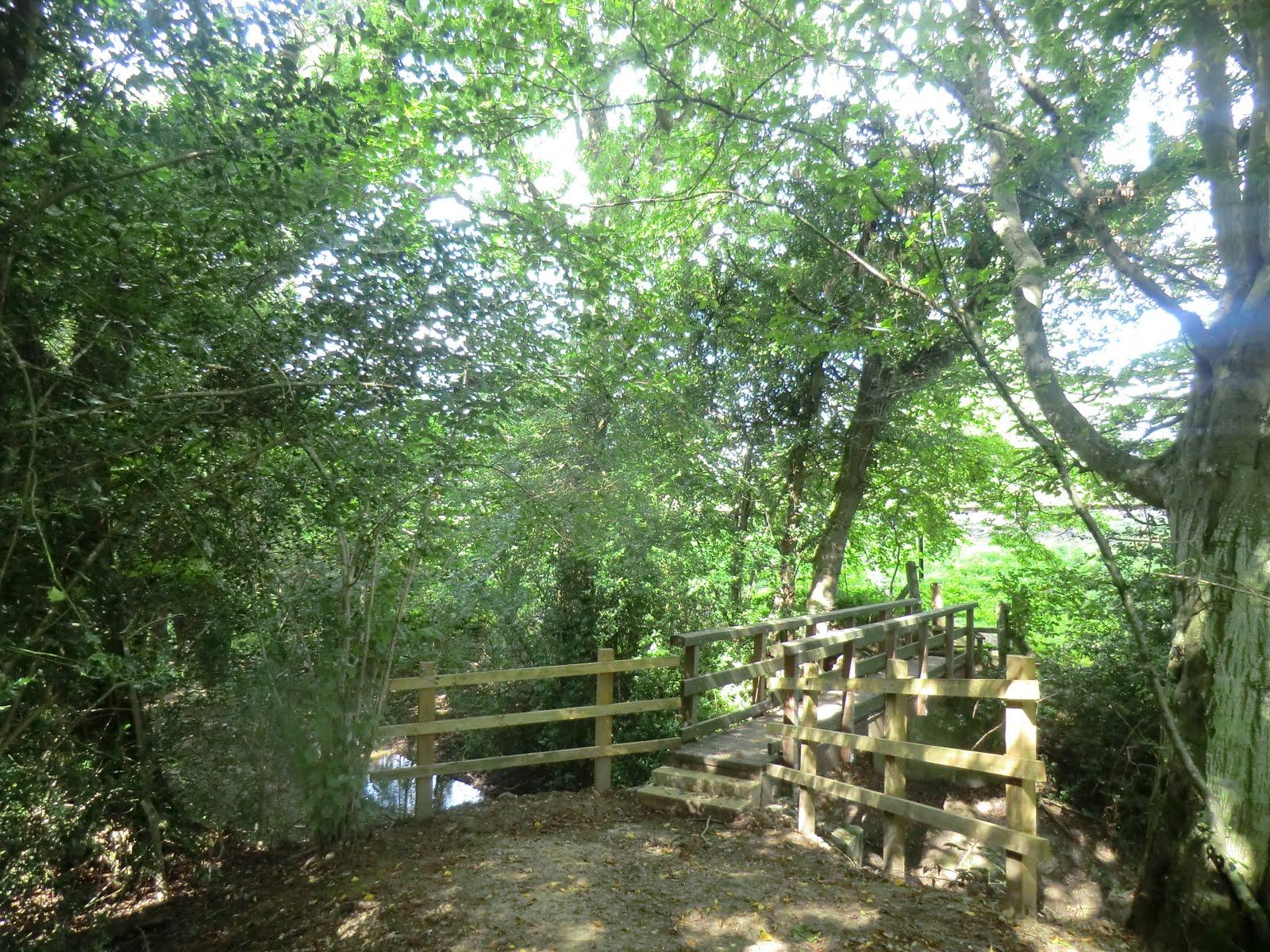 CIMG4701 Footbridge across Danehill Brook