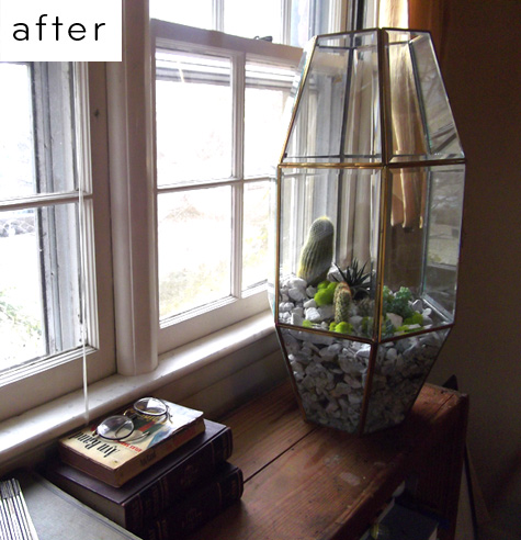 Using an old chandelier as a terrarium
