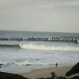 _DSC7273.thumb.jpg