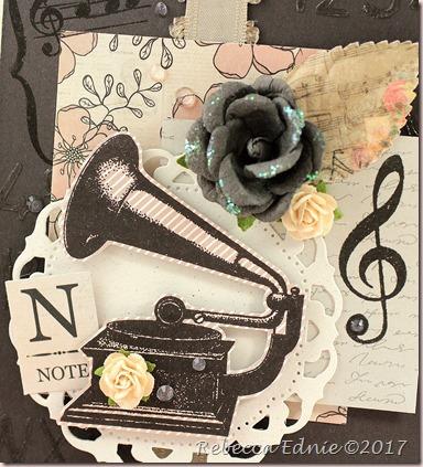 c4c music2