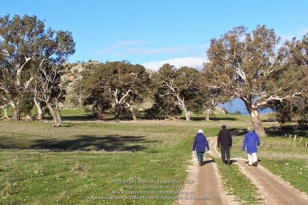 Keynes Gap-Eden Valley Loop & Springton to Keyneton (4)