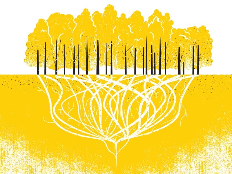 파일:external/41.media.tumblr.com/tumblr_nugqe9dl3z1uxpkfao1_1280.jpg