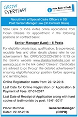 SBI Senior Manager Law 2017 indgovtjobs