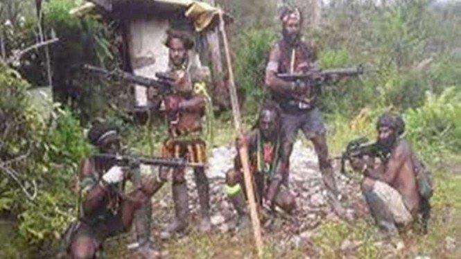 Baku Tembak saat Lebaran, 2 Anggota KKB Papua Dikabarkan Tewas