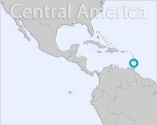 Saint Vincent and the Grenadines location map
