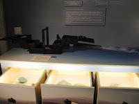 Részletek az Erdőjárók kalauza-Zemplén természeti értékeit bemutató kiállításból2.jpg