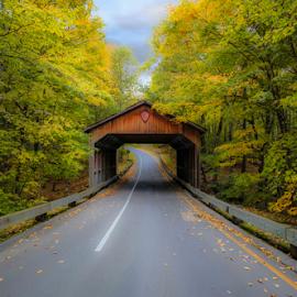 Autumn Bridge by Greg Sell - Transportation Roads ( fall, road, bridge, autumn, trees )