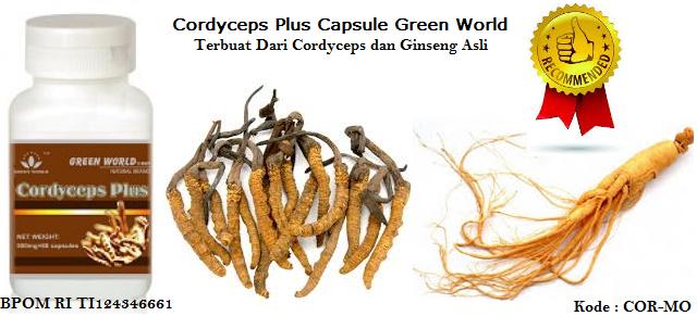 Harga Cordyceps Plus Capsule