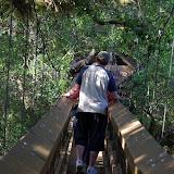 04-06-12 Myaka River State Park - IMGP4428.JPG