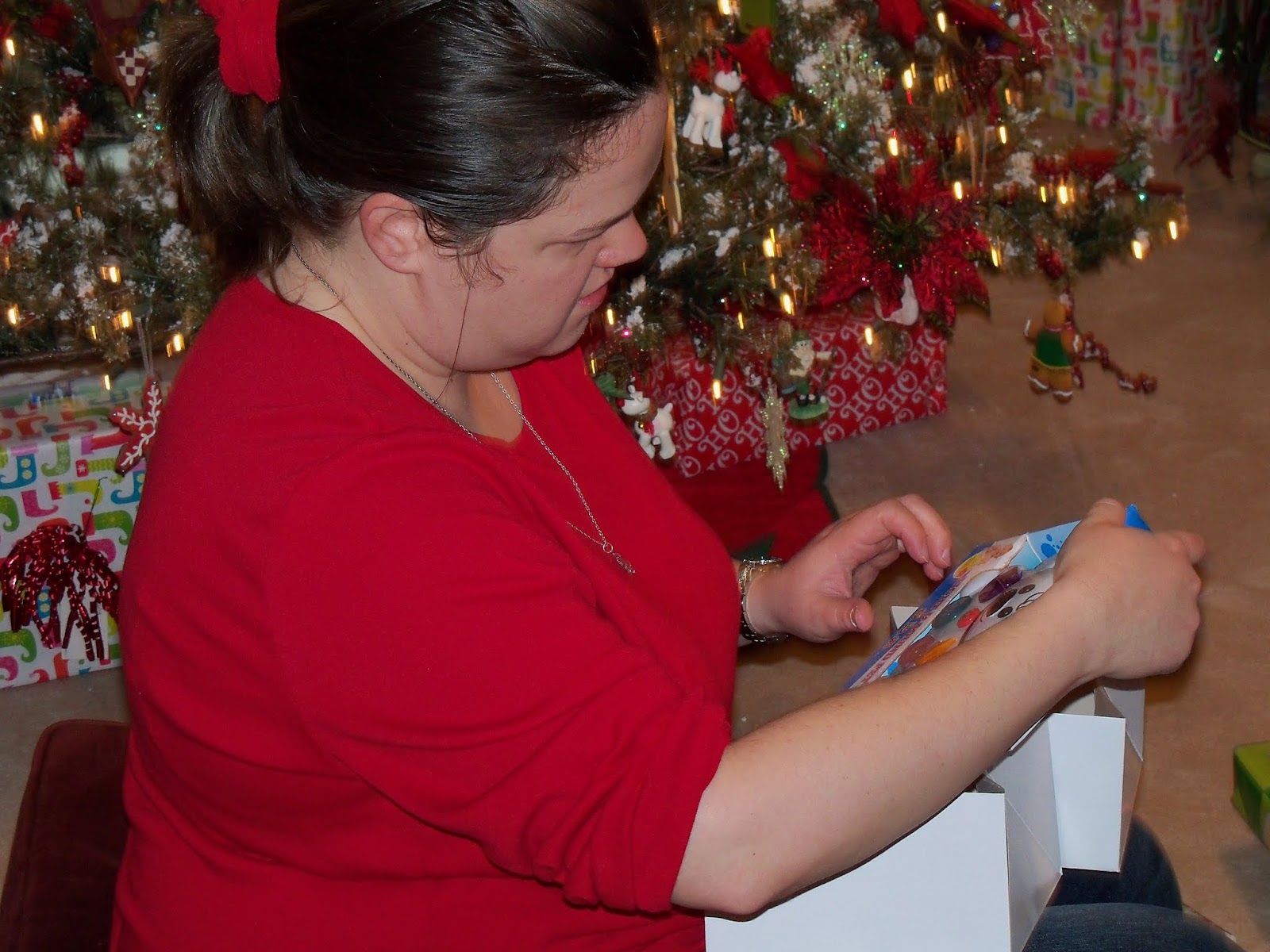 Christmas 2012 - 115_4860.JPG