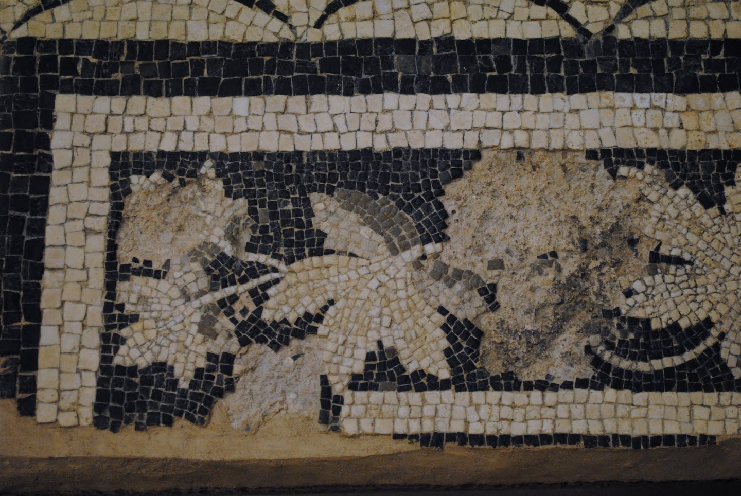 Archaeological Museum Mosaics & Antiquities