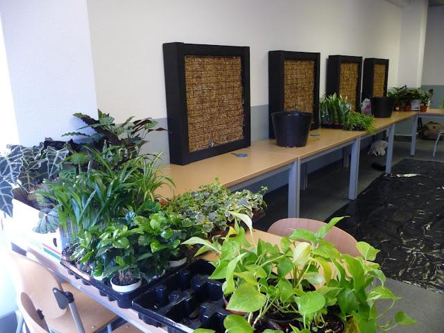 Im genes del curso de jardines verticales en madrid for Curso de diseno de jardines