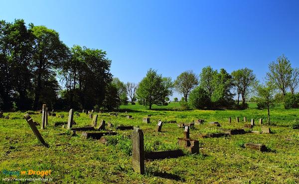 cmentarz mennonicki na Żuławach