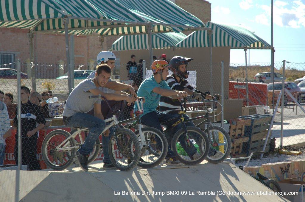 Ballena Dirt Jump BMX 2009 - BMX_09_0067.jpg