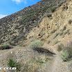 maple_springs_silverado_motorway_img_2264.jpg
