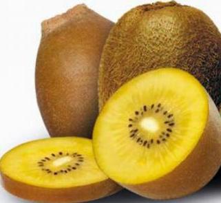 Manfaat Buah Kiwi yang mengandung Vit C dan Vit E