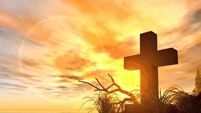 Hãy nhìn lên Thánh Giá, cuốn sách sự sống