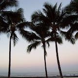Hawaii Day 4 - 100_7126.JPG