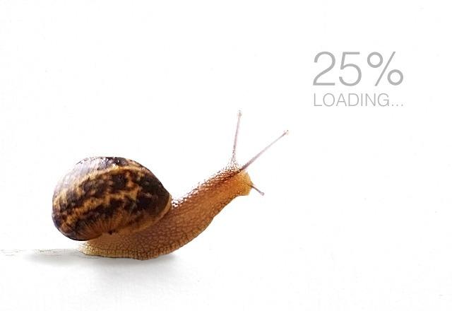 Website Is Running Slowly