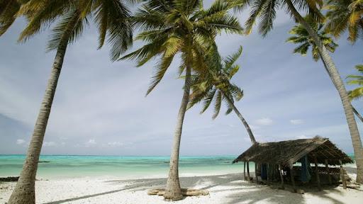 Jambiani Beach, Zanzibar Island, Tanzania.jpg