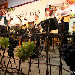 7. Vinařský ples