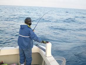 Photo: 潮が速い中、きっちり喰わせてます!