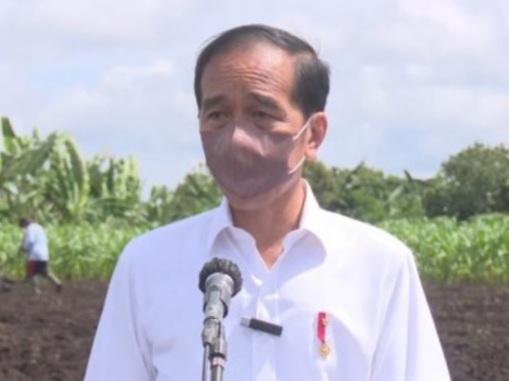 Jokowi Tak Butuh Pujian Apalagi Harus Bayar Orang, yang Dibutuhkan Adalah Dukungan