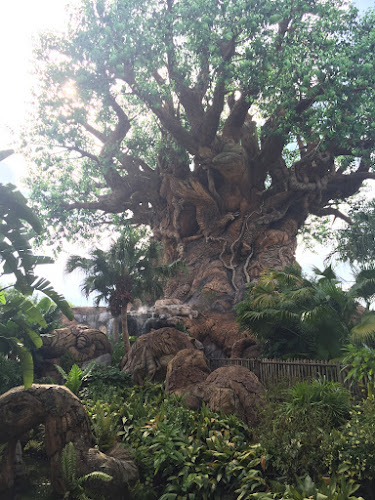 best Week Ever Animal Kingdom