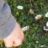Wiosenne przebudzenie cz. 1: Tymek na trawie