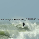_DSC7900.thumb.jpg