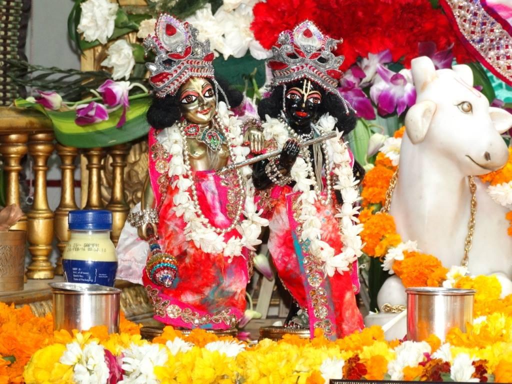 ISKCON Punjabi Bagh Deity Darshan 08 April 2016 (6)