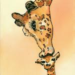 Giraffe Kiss.jpg