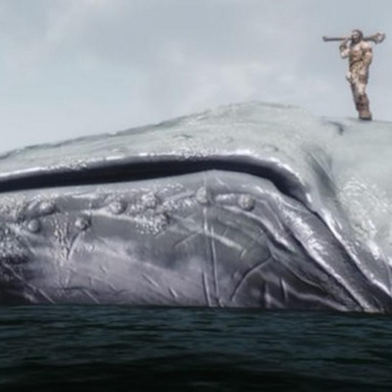 Mods der Woche: Wale und andere Meereskreaturen für Skyrim, und mehr