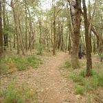 Walking south east of Corowal Plateau (314393)