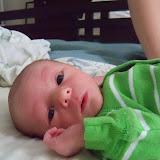 Meet Marshall! - 115_2554.JPG