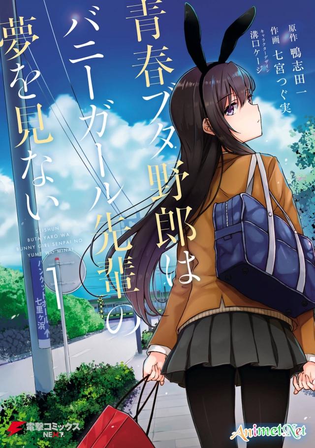 Seishun Buta Yarou wa Bunny Girl Senpai no Yume wo Minai - Seishun Buta Yarou wa Bunny Girl Senpai no Yume wo Minai (2018)