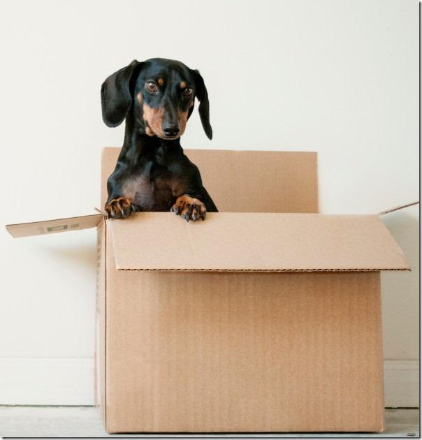 regole-per-decluttering-della-tua-casa-5