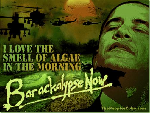 Algae_War_Barakalypse