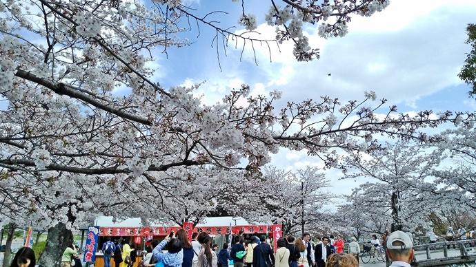 10 京都 嵐山渡月橋 賞櫻 櫻花 Saga Par 五色霜淇淋 彩色霜淇淋