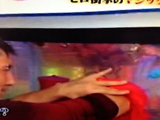 「ダウンタウンDXDX★緊急2時間2本立てSP 」セロ スペシャルマジック 水槽に腕が貫通