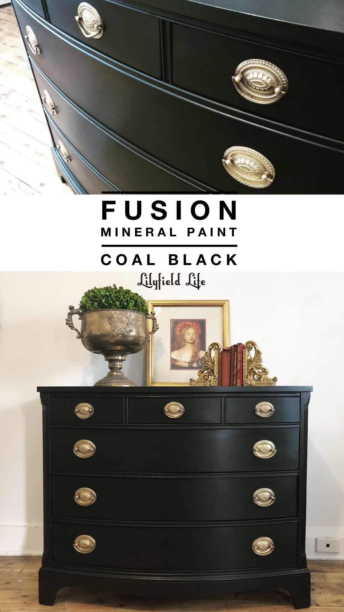 Fusion Mineral paint coal black