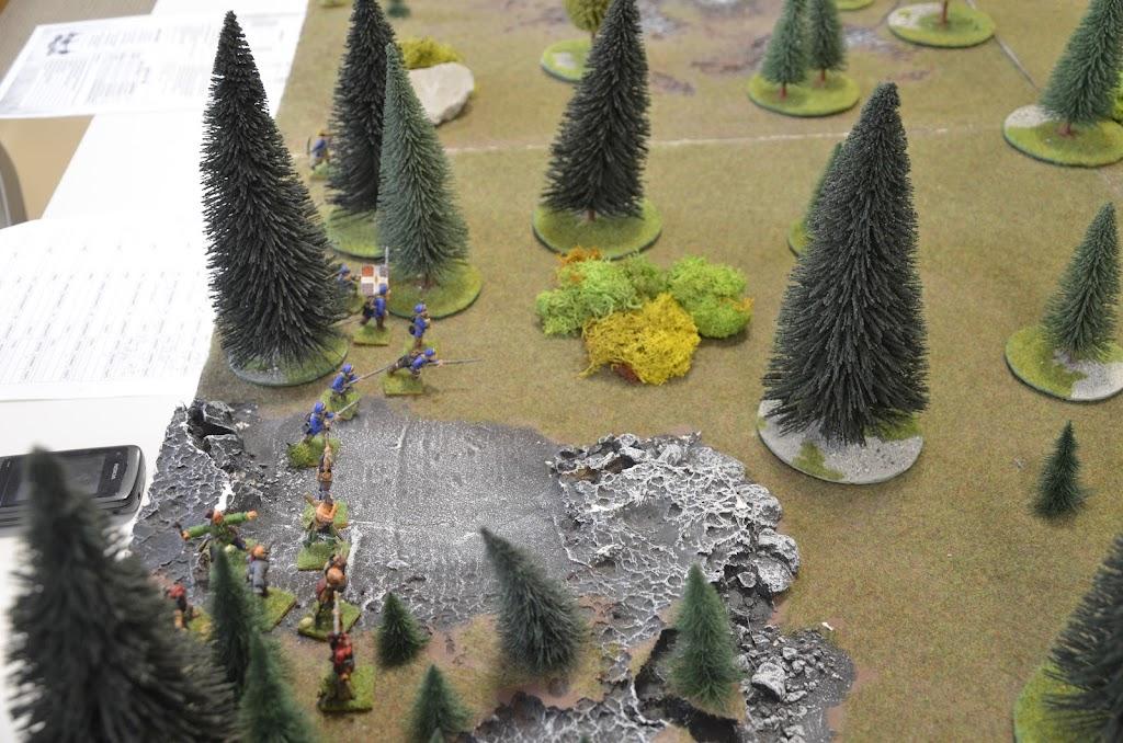 Grosse déroute dans les bois _DSC0221