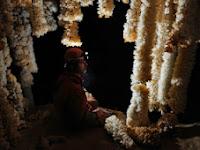 Emine Bojir Chasar barlang 02.jpg