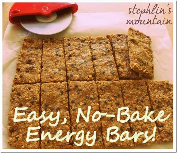 Easy, No-Bake Energy Bars