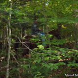 2011-10-06 002 - P9250505.JPG