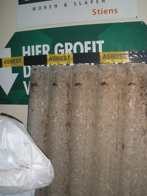 Asbestsanearringsfeest  - Asbestsaneringsfeest19..jpg