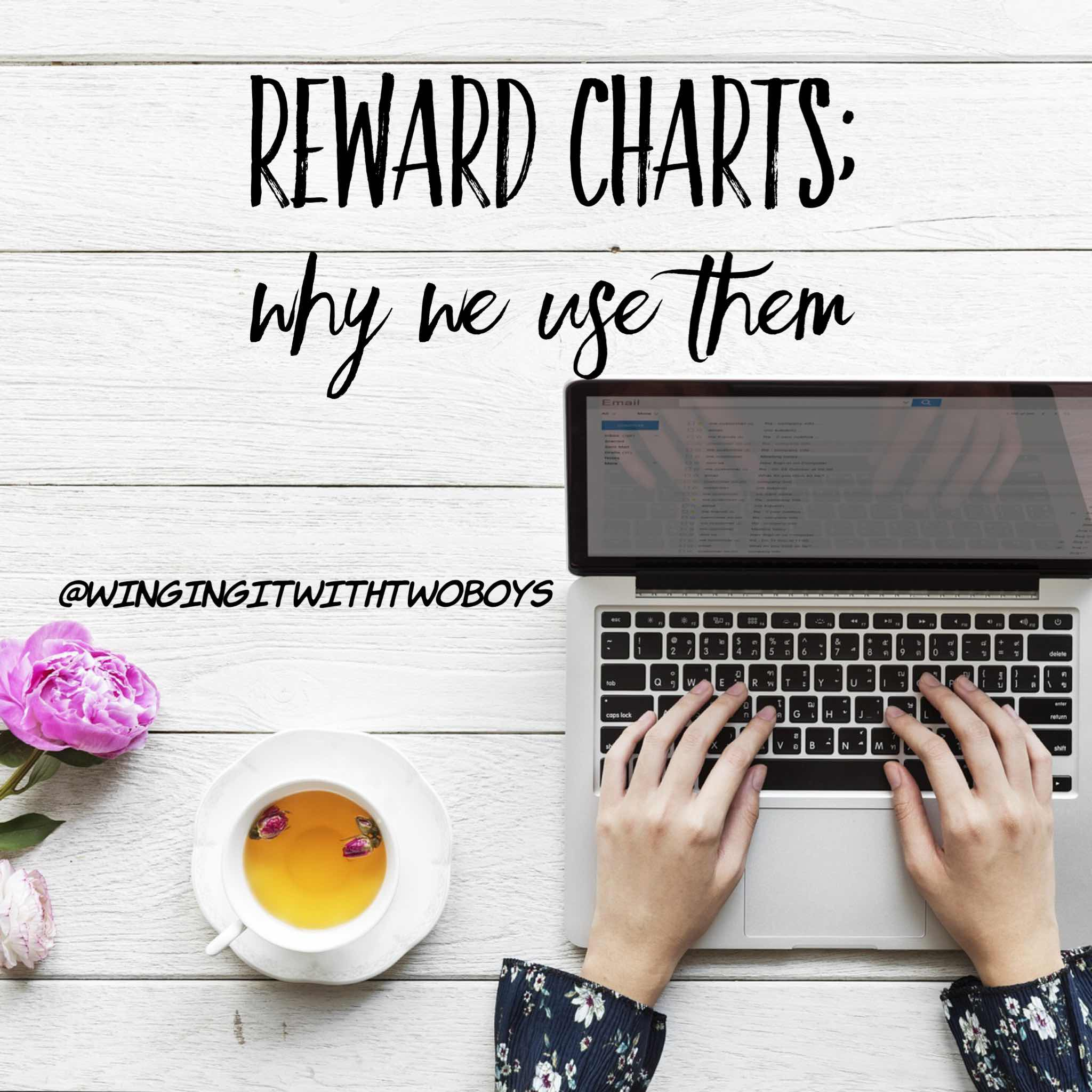 Reward charts; why we use them