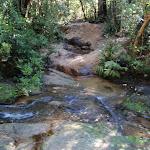 Crossing Osburn Creek (54032)